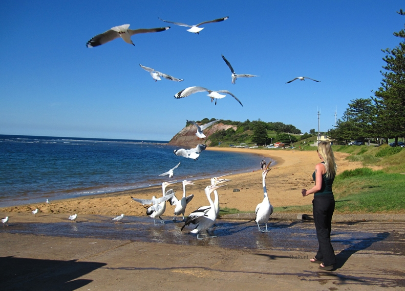 manly2010